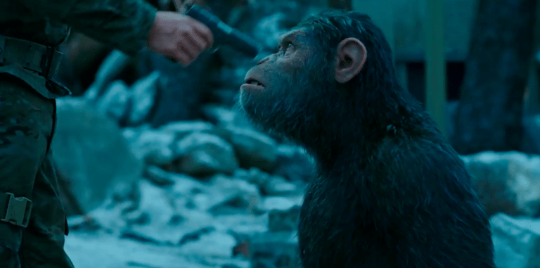 планета обезьян 2016 смотреть производства термобелья RED
